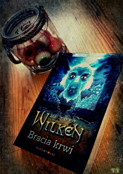 wilken-bracia-1